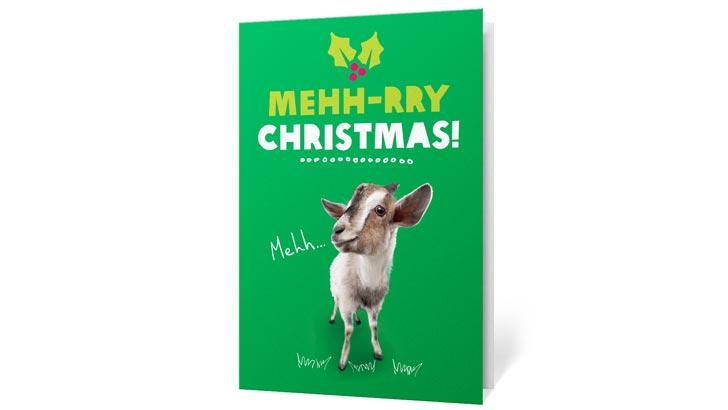 oxfam goat christmas charity