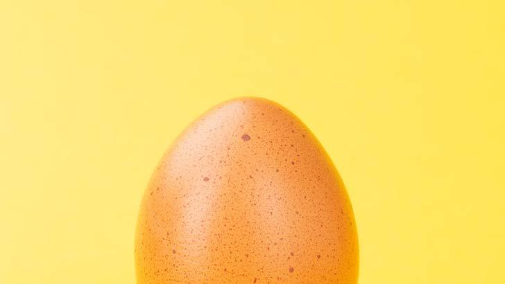boiled-egg-yellow.jpg